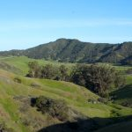 Panning over green hills in Johnson Ranch in San Luis Obispo.